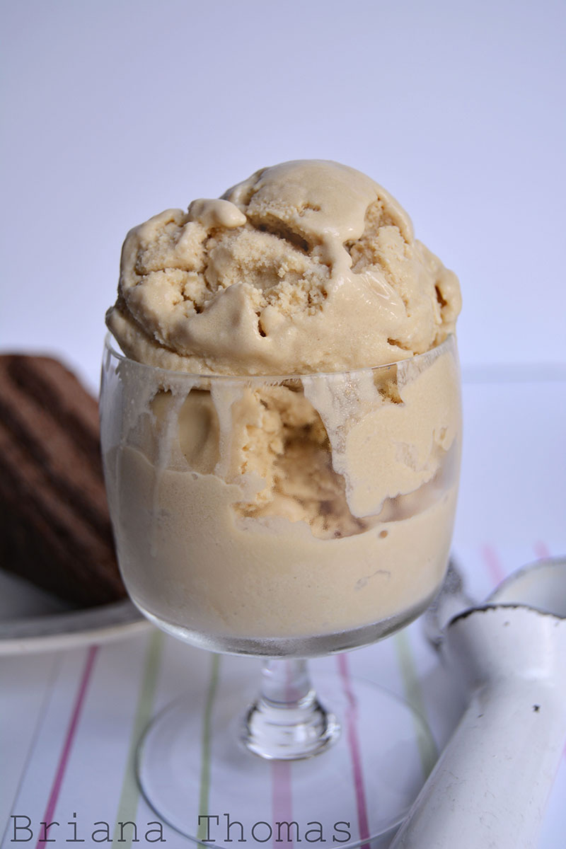French Vanilla Ice Cream - Briana Thomas