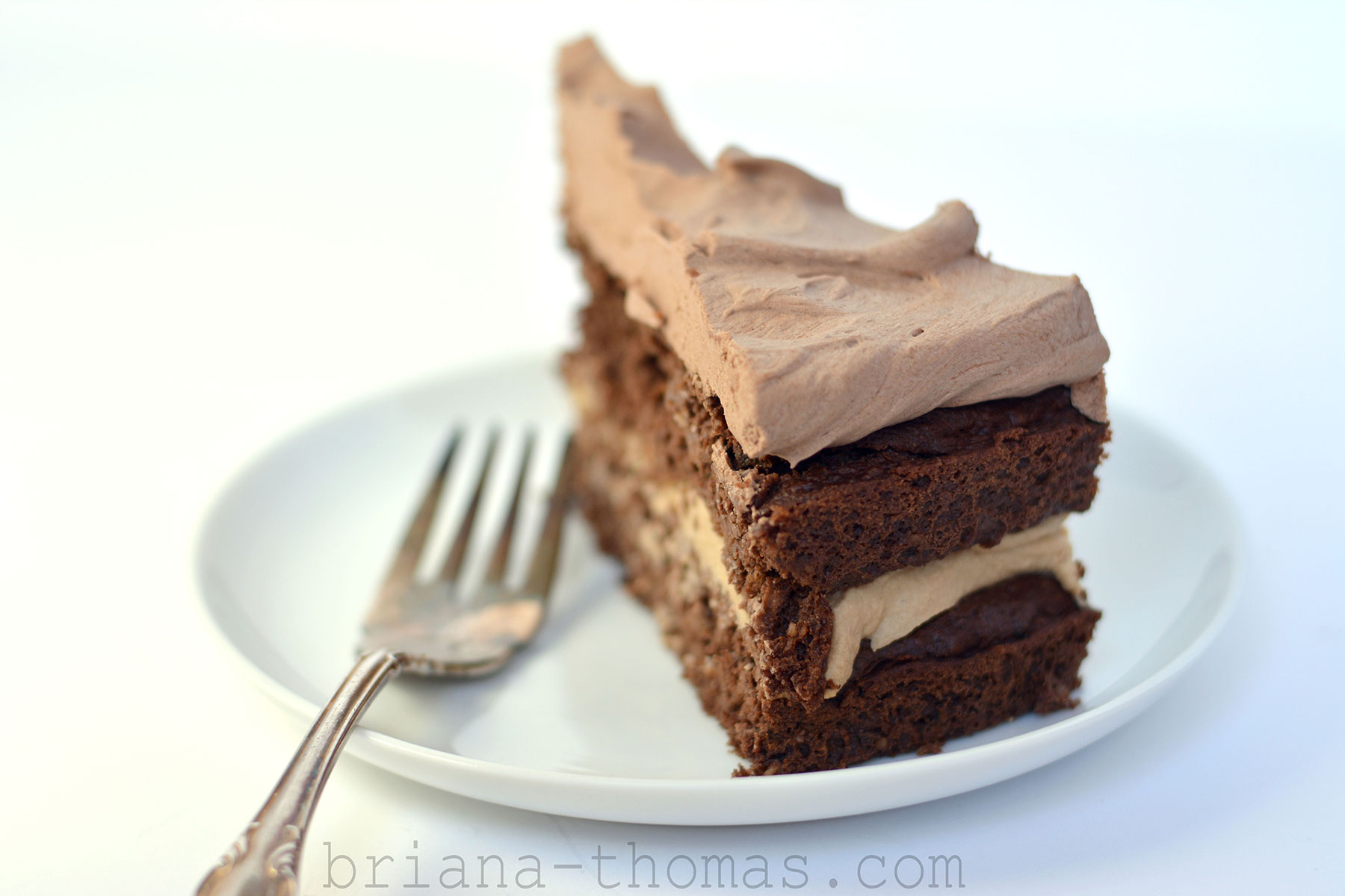 Basic Chocolate Layer Cake - Briana Thomas