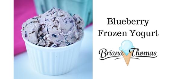 Blueberry Frozen Yogurt - Briana Thomas